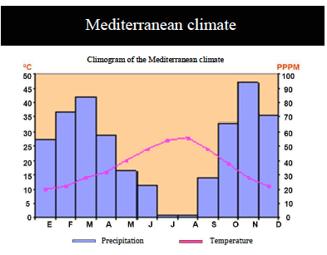 mediterranean-climate
