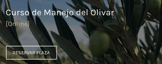cta enlace manejo del olivar online
