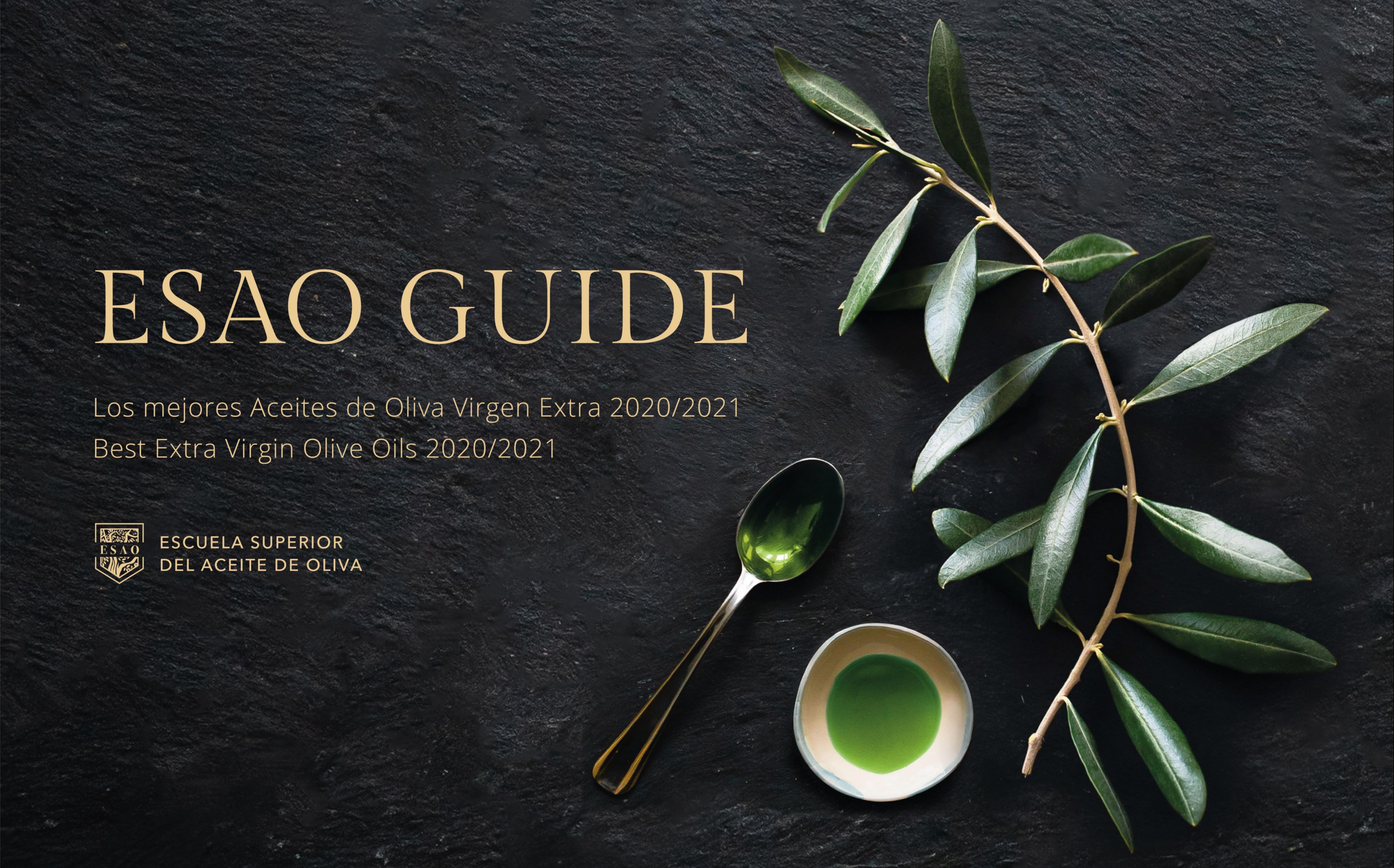 Guia ESAO Guide